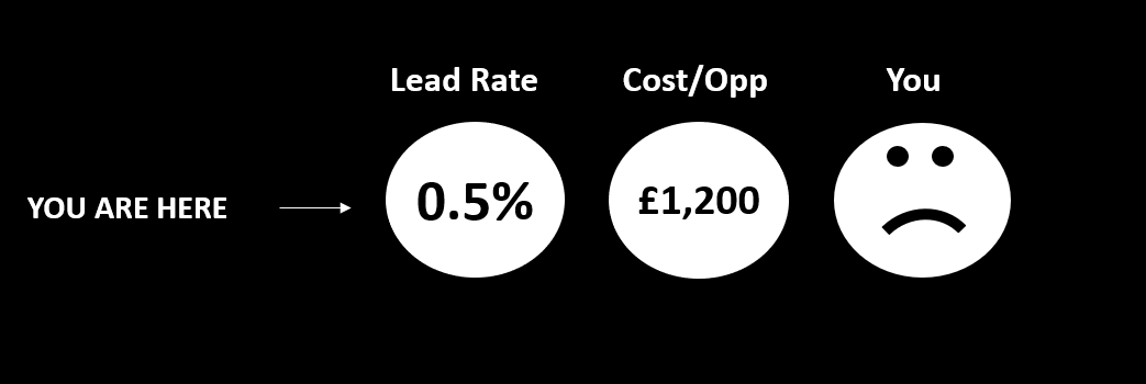 Poor lead rate, high cost per conversion, high cost per b2b lead, unsatisfied
