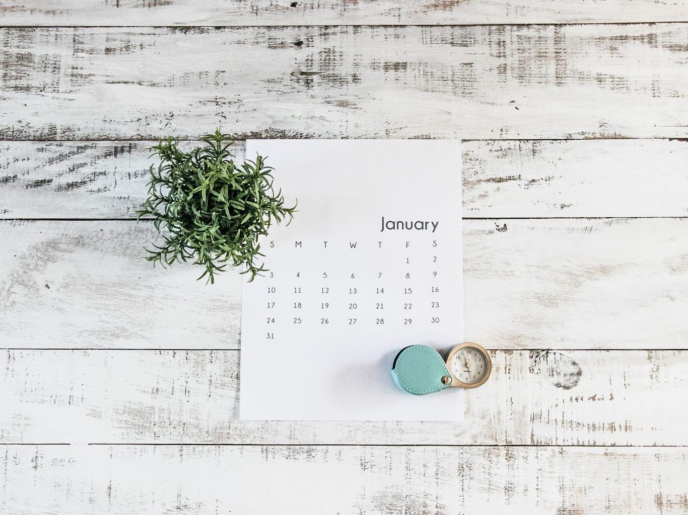 January calendar on a table with a plant